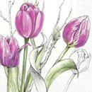 L Serviette Colourful Tulips pink